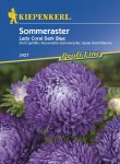 3427_Sommeraster_Lady_Coral_Dark_Blue_4000159034273_VS59378255dcafb