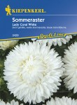 3429_Sommeraster_Lady_Coral_White_4000159034297_VS5937825e36316